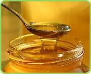 продам мед высокого качества оптом